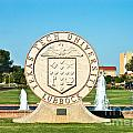 Classical Image Of The Texas Tech University Seal  by Mae Wertz