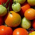 Closeup Of Ripening Fresh Tomatoes by Kerstin Ivarsson