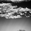 Clouds And Brush by David Waldrop