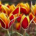 Cluisiana Tulips Fractal by Peter Piatt