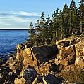 Coastal Maine by John Greim