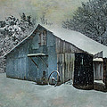 Cold Day On The Farm by David and Carol Kelly