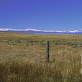 Colorado Fence Line by David Waldrop