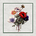 Colorful Anemones Square by Elaine Plesser