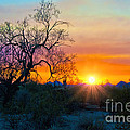 Colorful Sunset by Brian Lambert