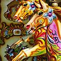 Colourful Fariground Horses On A Carousel by Robert Preston