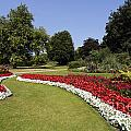 Colourful Flowerbeds In Hyde Park In London England by Robert Preston