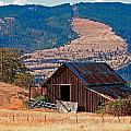 Columbia River Barn by Peter Tellone
