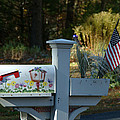 Countryside Mailbox #9 by Robert DeFosses
