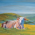 Cow Lying Down by Mike Jory