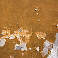 Cracked Stucco - Grunge Background by Michal Boubin