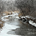 Creek by Debbie Hart