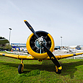 North American T-6 Texan by Pablo Lopez