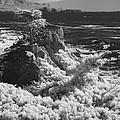 Cypress Point by Rich Stedman