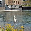 Dam Reflection by Susan Wyman