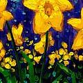 Dancing Daffodils Cropped  by John  Nolan