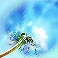 Dandelion by Lali Kacharava