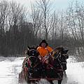 Dashing Through The Snow by Peggy  McDonald