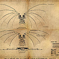 Davinci's Wings by James Christopher Hill