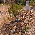 Dead In Tombstone by John Malone