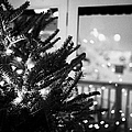 decorated christmas tree looking out of window to snow covered scene in small rural village of Forge by Joe Fox