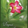 Deepest Sympathies Greeting Card by Prajakta P
