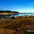 Deer Isle Maine by Thomas R Fletcher