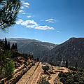Delphi - Greece by Constantinos Iliopoulos