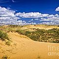 Desert Landscape In Manitoba by Elena Elisseeva