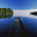 Dock On Lake Mapourika by Andy Reisinger