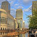 Docklands London by Julia Gavin