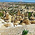 Dog Looking At Fairy Chimneys In Cappadocia-turkey by Ruth Hager