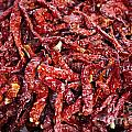 Dried Chilli by Tim Hester