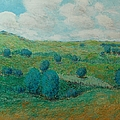 Dry Hills by Allan P Friedlander