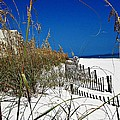 Dune Fence Me In by Mary Marsh