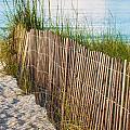 Dune Fence On Beach  by Alex Grichenko