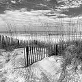 Dune Fences by Debra and Dave Vanderlaan