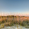 Dunes To Lighthouse by Dale Powell