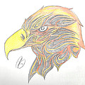 Eagle Head by Minding My  Visions by Adri and Ray