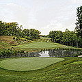 Eagle Knoll - Hole Fourteen From The Green by Cricket Hackmann