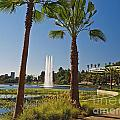 Echo Park L A  by Howard Stapleton