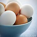 Eggs In Bowl by Elena Elisseeva