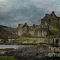 Eilean Donan Castle by Suesy Fulton