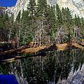 El Capitan Reflection by Scott McGuire