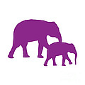 Elephants In Purple And White by Jackie Farnsworth
