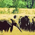 Elephants by Ronald Jansen
