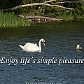 Enjoy Lifes Simple Pleasures by Pharaoh Martin
