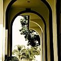 Entrance by Athala Carole Bruckner