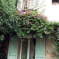 Entrances Of Provence by Barbara Hammond