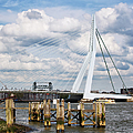 Erasmus Bridge In Rotterdam by Artur Bogacki